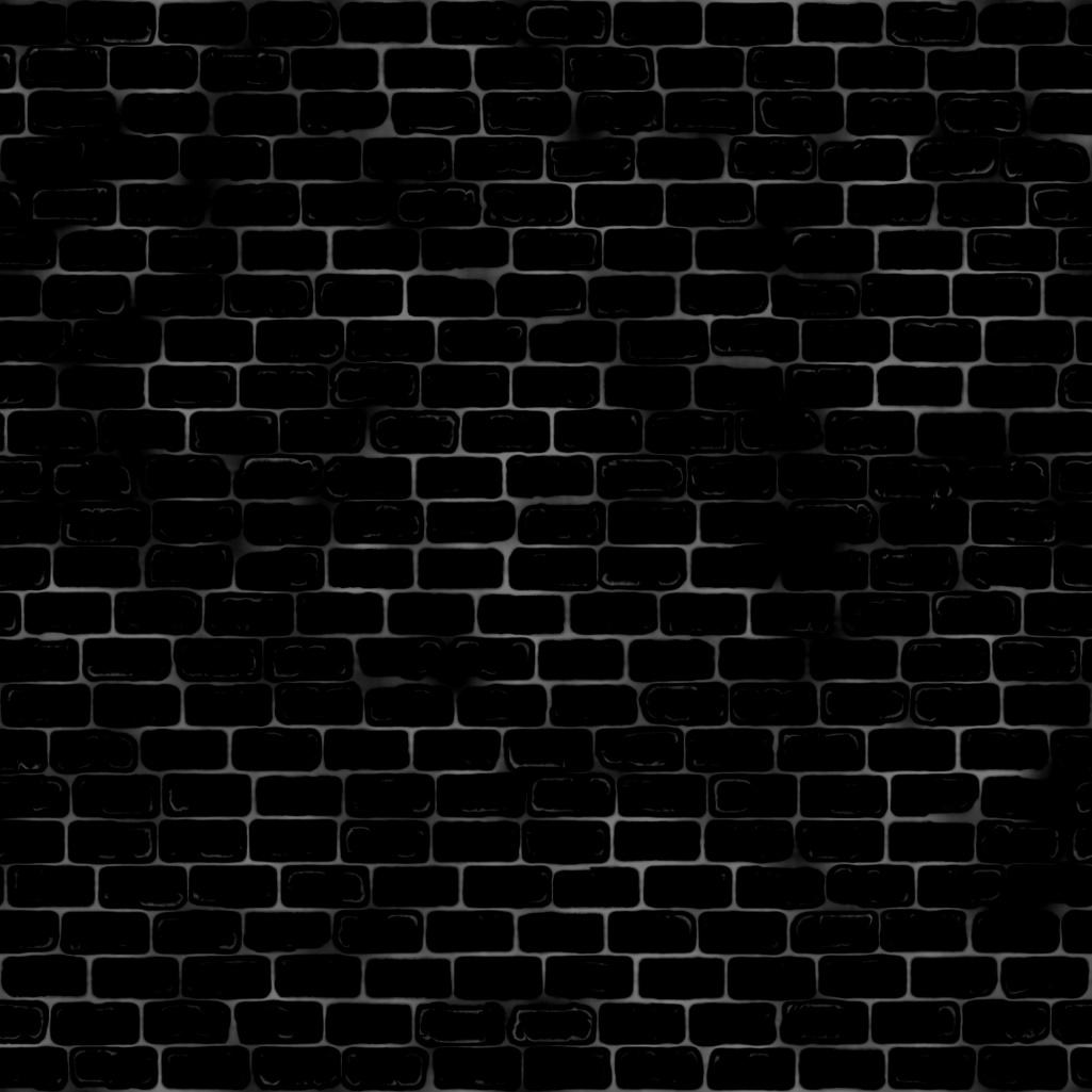 textures/Brick_Wall_2_roughness.jpg
